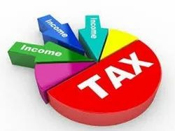 Professional Income Tax Consultant, in Pan India, Firm