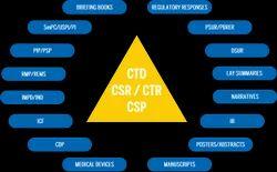 CSR & CER Strategy Service