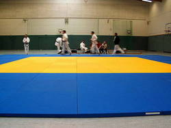 Judo Mat International JRS Stag J109C