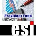 PF & ESI Return filing