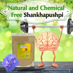 Ayurvedic Shankhpushpi Powder 1kg - Memory Support & Improve Nervous system