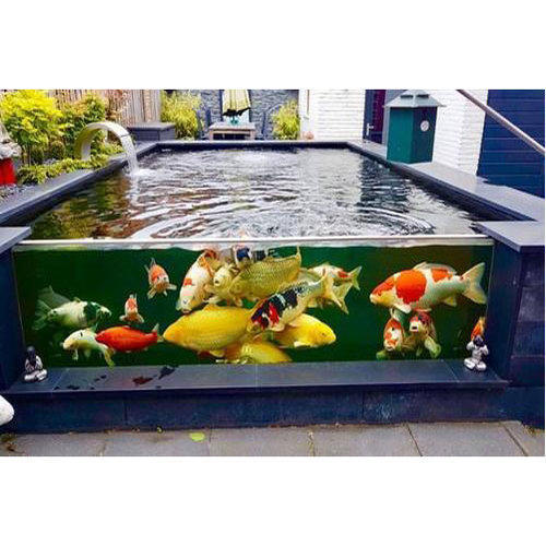 Glass and acrylic koi fish pond size 6 x 4 feet rs 50 for Koi pond glass