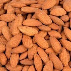 American Almond Nut