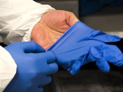 Laboratory Surgical Hand Gloves