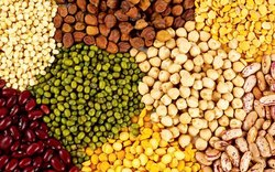 Aashirvad Yellow Pulses/ Dal, Pan India, Packaging Size: 1 Kg