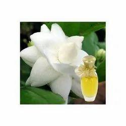 Motia Fragrance