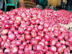 Redexport Quality Onions, Packaging Size: 50 Kg