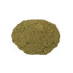 Ocimum Sanctum Extract