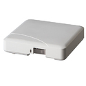 Zoneflex R500 Indoor Access Point