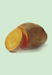 Yam - Exporters in India