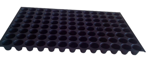 CAPPL Black Seedling Tray