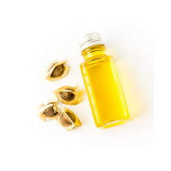 Natural Moringa Seeds Skin Care Oil