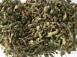 FARMVILLA Green Tulsi Leaves, Packaging Type: Hdpe Bag, Packaging Size: 25 Kg
