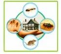 Chemical Based Garden Pest Control In Ahmedabad