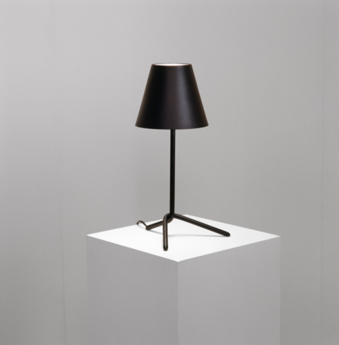 Craft Looks Decorative Metal Table Lamp