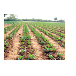 Drip Irrigation Line Tape