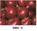 Mangal Dev Research Vegetable Seed Mro-5