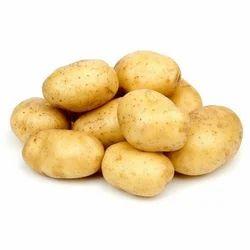 Diamond Potato Seed, Packaging Size: 50 Kg, Packaging Type: Gunny Bag