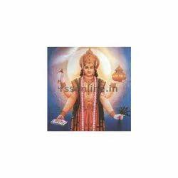 Homa Package Dhanvantri Homam Puja Kit, Packaging Type: Box, 41