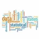Statistical Analysis Service