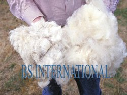 Natural White Raw Cotton, For Quilts, Packaging Size: Bulk