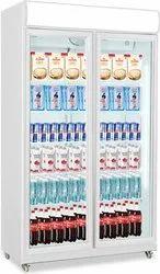 Double Door Visi Cooler