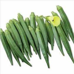 NEELAM Green Okra/Bhindi seeds - Komal Gold, Packaging Type: Box, Packaging Size: 500 Gm