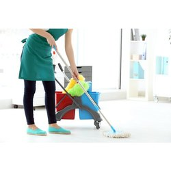 Home Cleaning Services, in Local