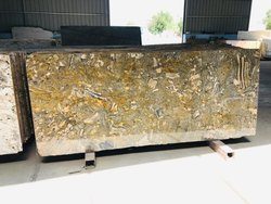 SGM Marquina  Green Granite Slab