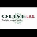 Olive Exports Private Limited