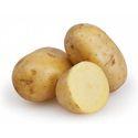 Pure Fresh Potato