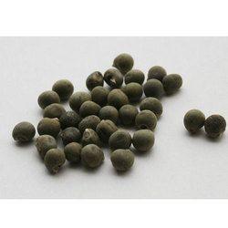 RSR Hybrid Bhindi Seeds, Pack Size: 100 and 200