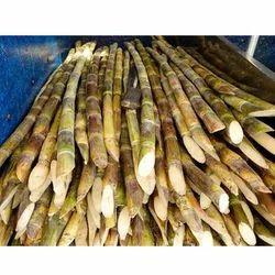 Agriculture Sugarcane, No Preservatives