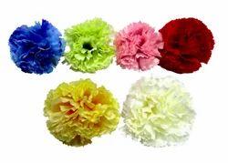 D1889 Artificial Loose Carnation Flower, Decoration, Packaging Size: 500 Dozen