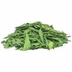 Neem Leaves, Azadirachta indica