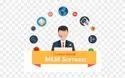 Custom Mlm Software, Duration : 1 Year