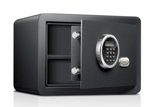 Electronic Safe(NSE-25)