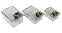 Polycarbonate Rat And Mice Cages