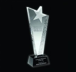 8 Inch Crystal Trophy