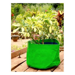 Nursery Grow Bag