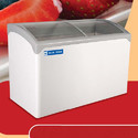 Blue Star Display Freezers