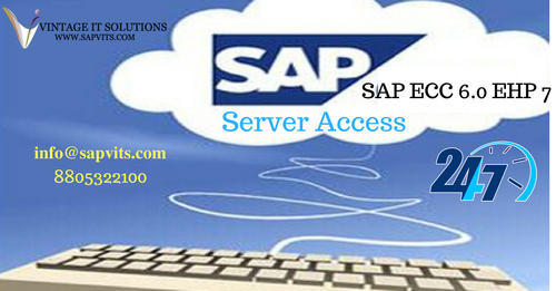 SAP Server Access - SAP Dedicated server IT / Technology