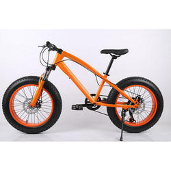 Orange, Black Phoenix Mountain Fat Bike Cycle