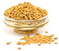 Yellowish Brown And Angular Fenugreek Seeds