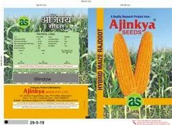 Hybrid Maize Rajdoot
