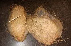 Indian Dried Coconuts