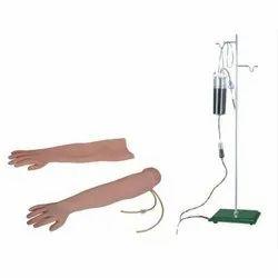 Venipuncture & Intramuscular Injection Arm Model