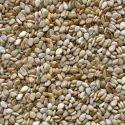 White, Beige Natural Sesame Seeds, Pack Size: 25, 50 Kg