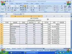 Excel Reports And Calculations Software Services in Goregaon
