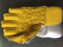 Cricket Keeping Glove